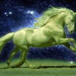 Удача в год Лошади