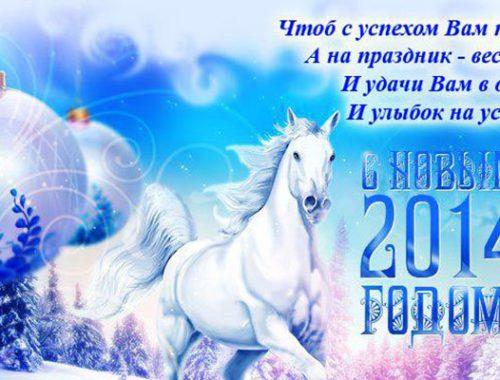 прогулки по ци-мень в год лошади